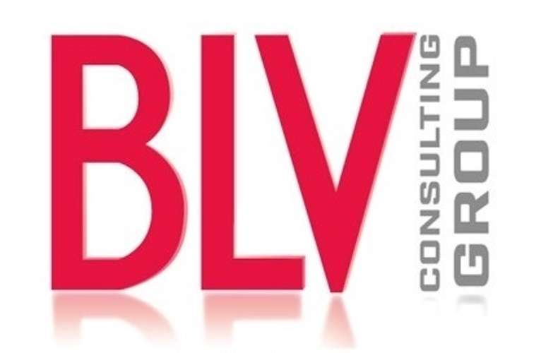 BLV CONSULTING 0
