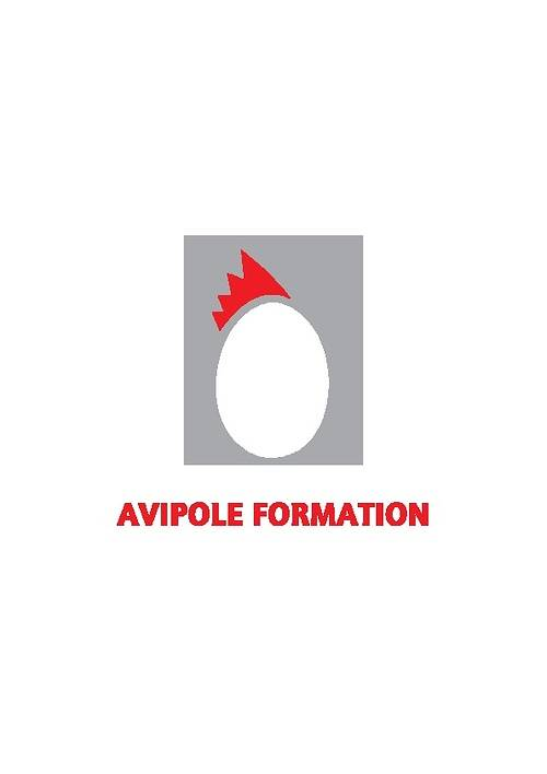 AVIPOLE FORMATION 0